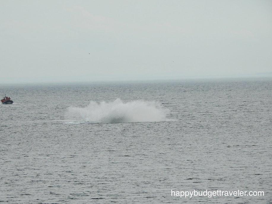 St. Catherine-Quebec, Whale breach splash.